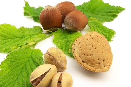 Tasty nuts