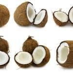Coconut...
