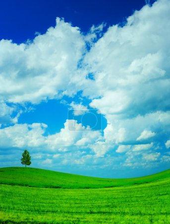 Photo for Hill field sky - Royalty Free Image