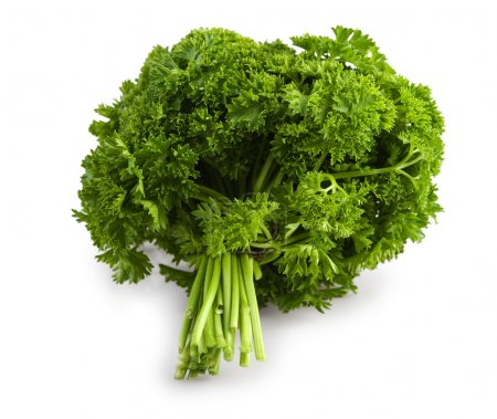 Bunch of a parsley isolated