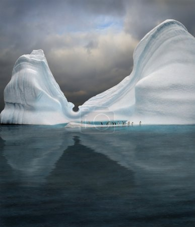 Iceberg is swimming pool for penguins