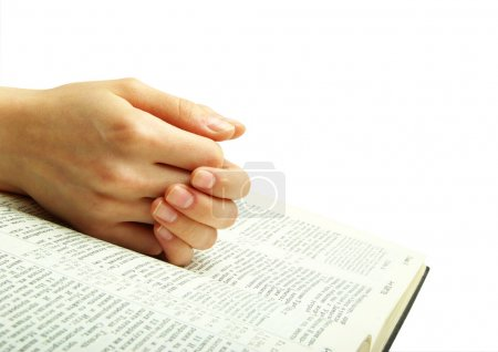 Photo for The opened bible is isolated on a white background - Royalty Free Image