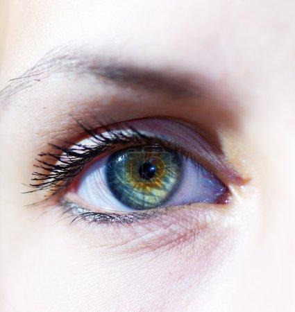 Photo pour Beaux yeux de jeune fille le gros plan - image libre de droit