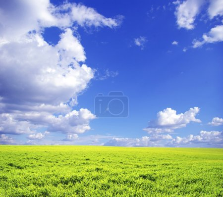 Foto de Campo sobre un fondo de cielo azul - Imagen libre de derechos