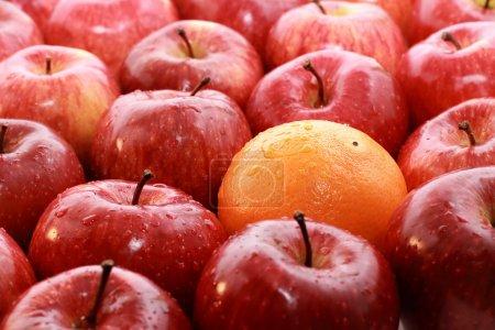 Photo pour Pommes et oranges isolées sur fond blanc - image libre de droit