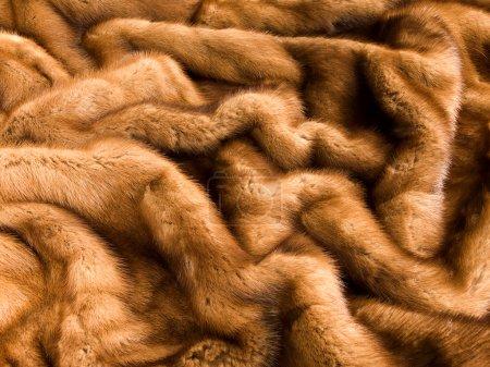 Photo pour Gros plan de la texture de fourrure de vison brun luxe. - image libre de droit