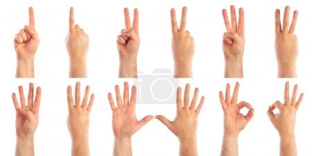 Photo for Male hands counting - Royalty Free Image