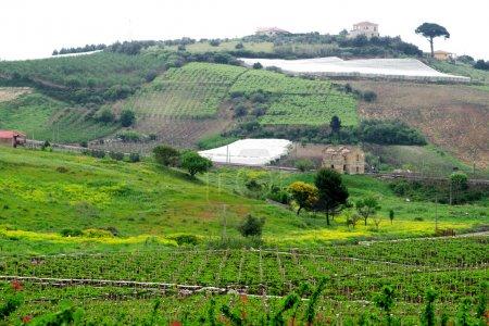 Klassischer Blick auf den ländlichen Raum in Sizilien