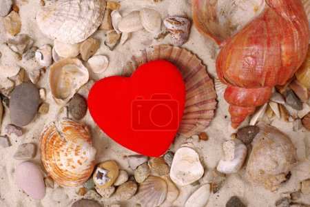 Photo for Sea Shells and red heart in sand - Royalty Free Image