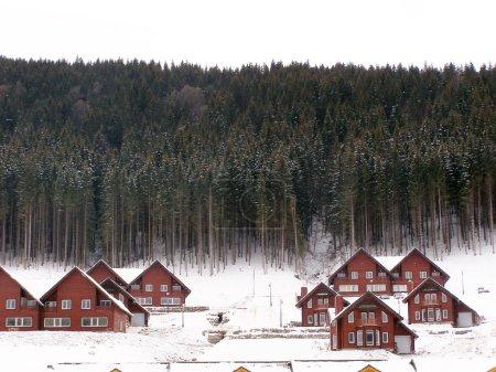 Photo pour Bases de loisirs en hiver dans le contexte des pins élevés dans les Carpates. - image libre de droit