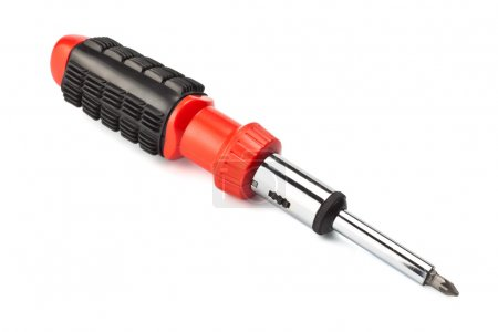 Screwdriver with removable bits