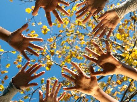 Photo pour Quatre adolescents de nationalités différentes s'approchant les mains à l'extérieur à l'automne - image libre de droit