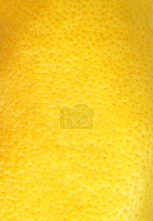 Texture of grapefruit skin.