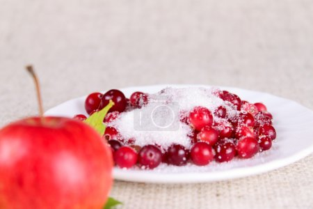 Photo for Plate of a cowberry sprinkled with sugar removed close up against a linen napkin - Royalty Free Image