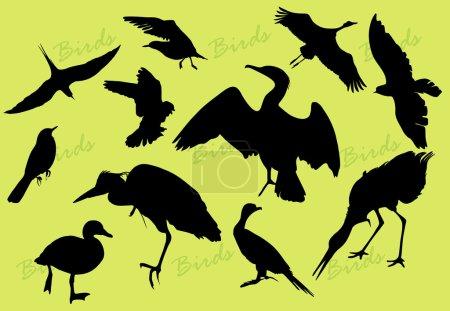 Ilustración de Negras siluetas de los pájaros sobre fondo verde - Imagen libre de derechos