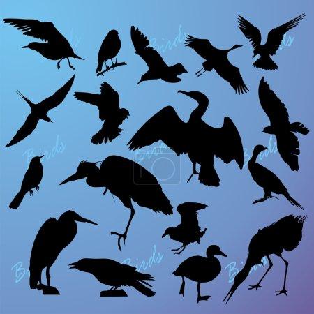 Ilustración de Las siluetas de los pájaros se vuelven azules - Imagen libre de derechos