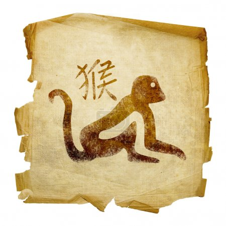 Monkey Zodiac icon, isolated on white b