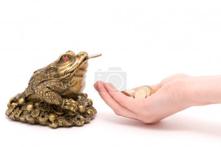 Feng shui toad give a money