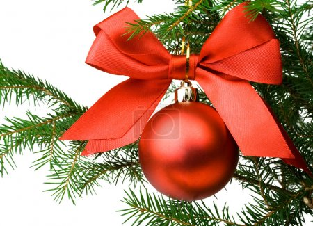 Christmas pine branch with a red ball an