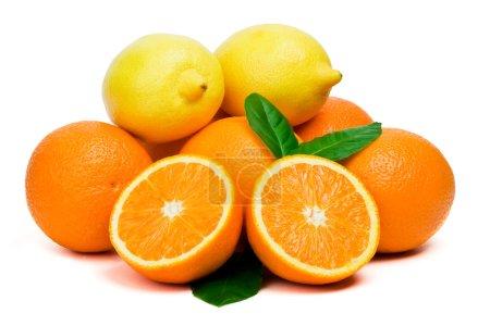 Photo pour Orange et citron sur fond blanc - image libre de droit