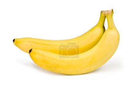 Two banana on white background