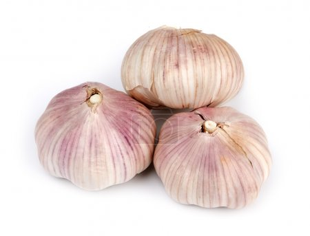 Photo for Garlic headg isolated on white background - Royalty Free Image