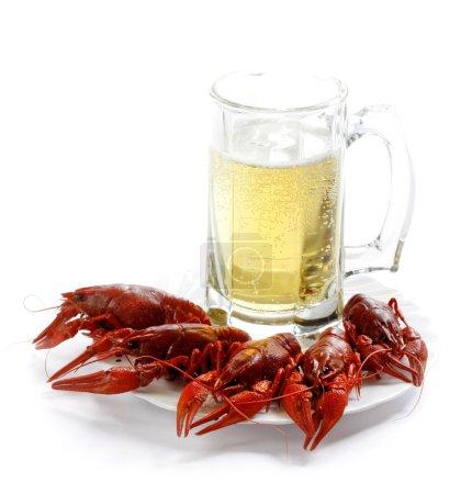 Photo pour Les cancers rivière bouillie et la bière sur fond blanc - image libre de droit