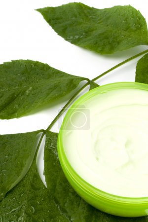 Face cream with green leaf