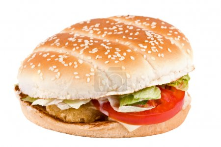 Hamburger with cheese and meat