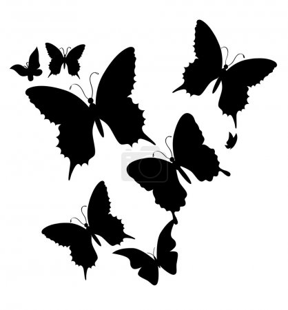 le papillon. illustration vectorielle