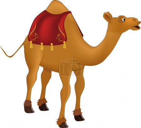 Illustration for Camel ,africa, animals, arabia - Royalty Free Image