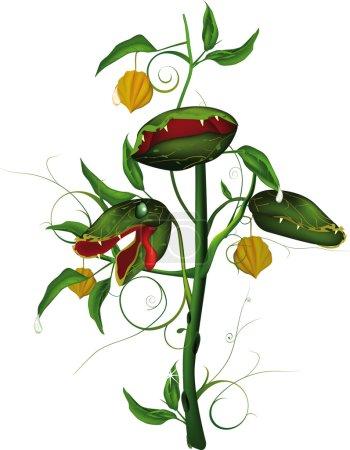 Very hungry predatory flower