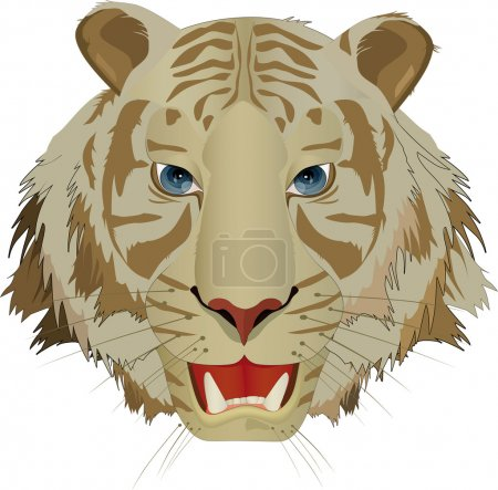 Tiger with