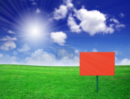 Photo for Green field - Royalty Free Image