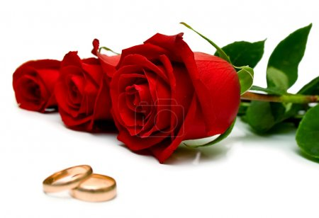 Foto de Anillos de boda y rosas rojas sobre fondo blanco. aislado. dof superficial, foco en rosa - Imagen libre de derechos
