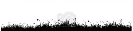 Illustration for Black silhouette of a meadow grass on a white background - Royalty Free Image