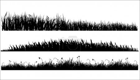 Illustration for Three variants of black silhouette of a meadow grass on a white background - Royalty Free Image