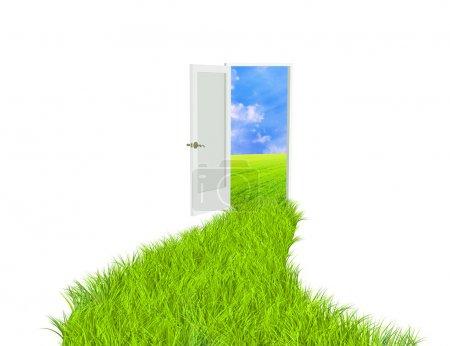 Photo pour Image conceptuelle - route avec herbe vert vif - image libre de droit