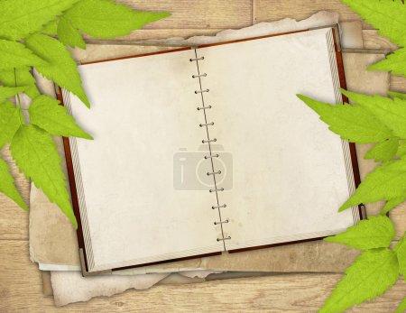 Photo pour Grunge fond avec feuille de papier et feuilles vertes - image libre de droit
