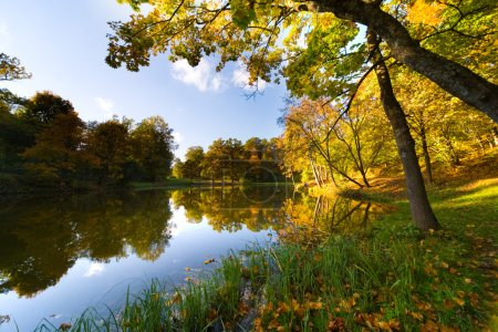 Autumn landscape of lake