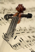 Violin and music notes
