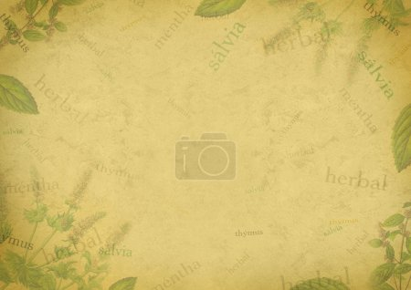 Herbal background on old paper
