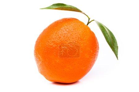 Photo pour Orange avec feuilles sur fond blanc - image libre de droit