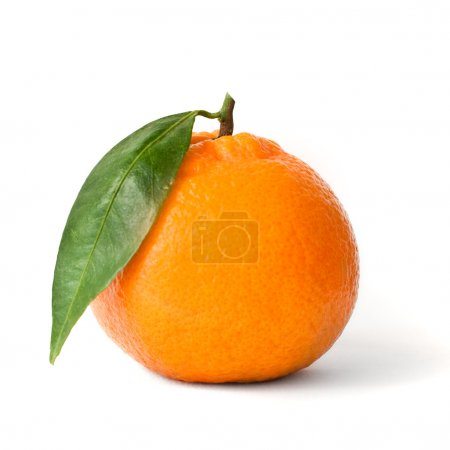 Isolated fresh mandarin