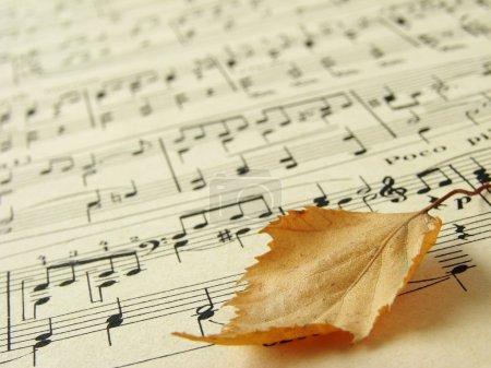 Photo pour Ancienne feuille de symboles musicaux avec feuille automnale - image libre de droit