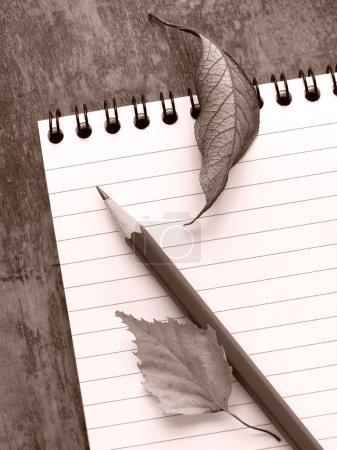 Photo pour Sépia tonique bloc-notes en spirale avec un crayon et sec laisse nature morte - image libre de droit