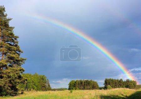 Rainbow, landscape
