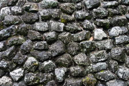 Photo for Ancient stone wall of Mayan building in Palenke, Mexico, - Royalty Free Image