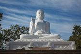 Sitting Budha image