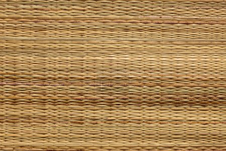 Floor mat texture